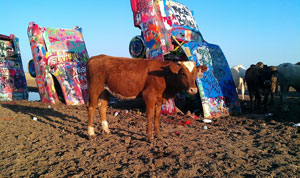 weird_cadillac-ranch2_richard_kindly