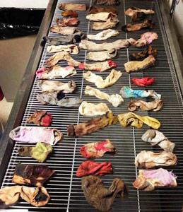 us_dog-socks