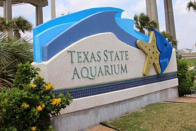 texas_state_aquarium_1