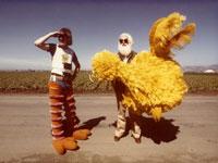 afisha_austin_i-am-big-bird