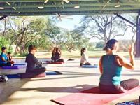 afisha_sa-yoga