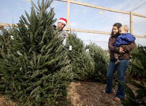 weird_christmas_trees